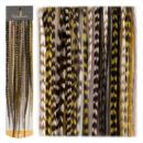 Cool Mix - Featherlocks, Feder Extensions